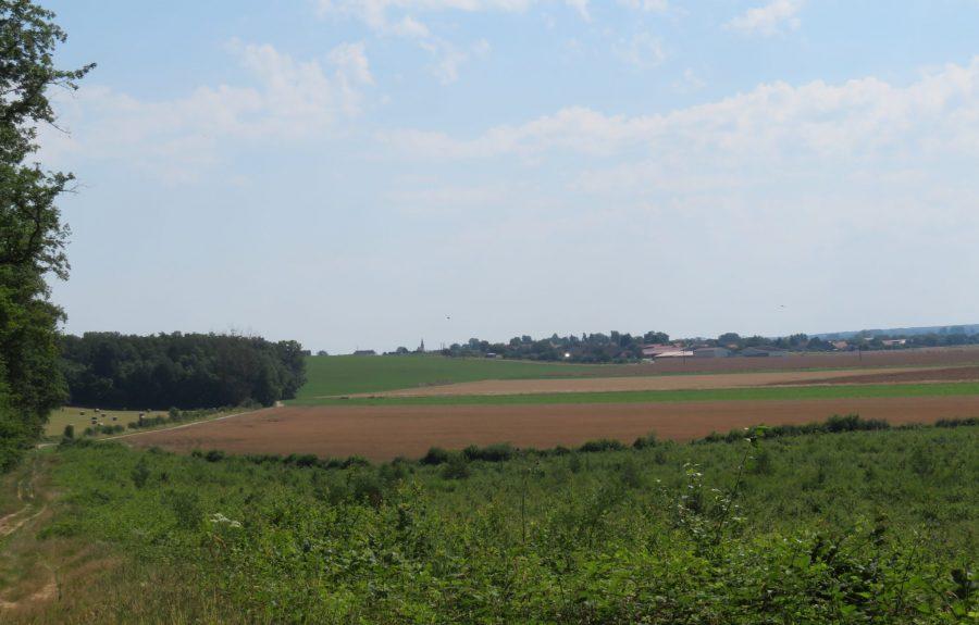 Sentier du Chevreuil à Chivres