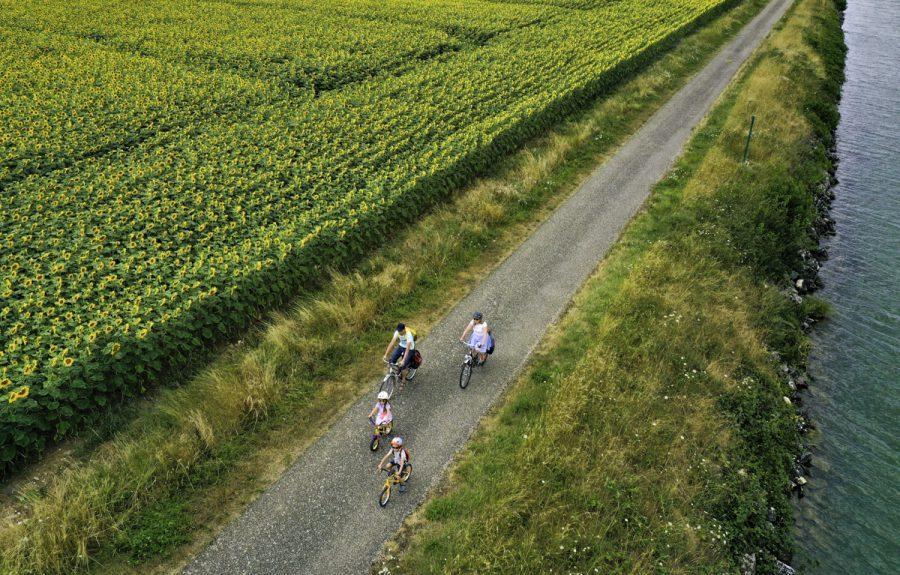 La Voie Bleue, Moselle Saône à vélo® Pagny-la-ville